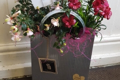 sweetpea-florists-gifts22