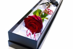 sweetpea-florists-gifts47